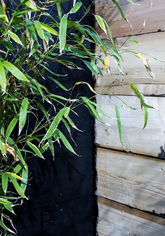 Schwarze-Holzwand-Garten-selbstgebaut-Sichtschutz-Blog-Jennadores-Bambus-Vorschau
