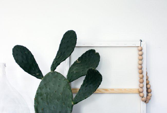 Kaktusfeige-Blog-Jennadores-Pflanzenfreude-Interior-Ibiza-Styling