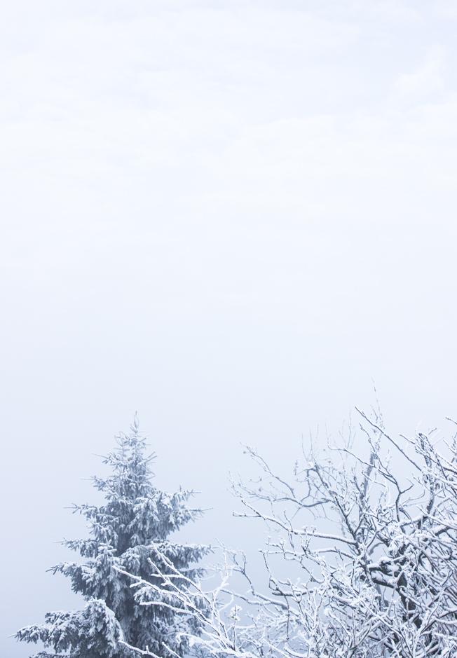feldberg-taunus-wandern_winter-blog-jennadores-schnee-k