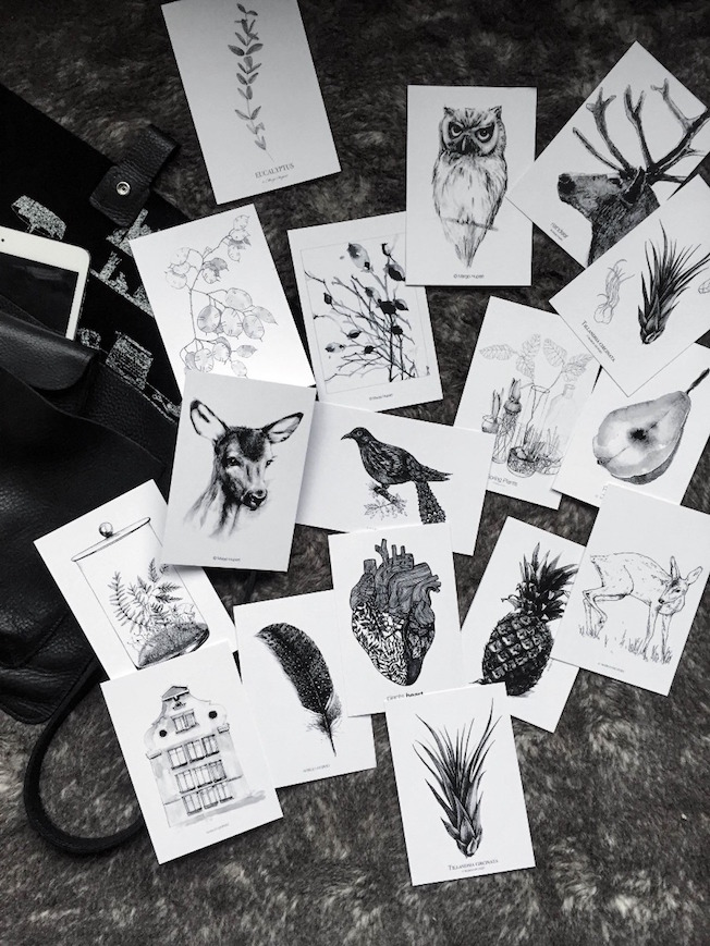 prints_margo_hupert_postkarten-blog_jennadores-botanical-gerahmt