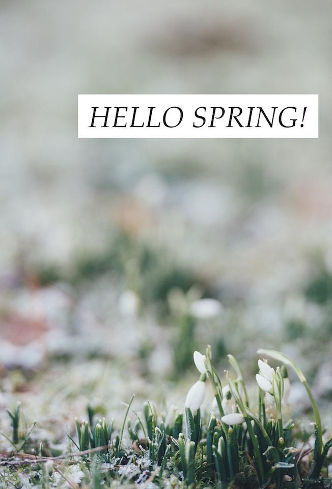 Schneegloeckchen, Spring, Fruehjahrsblueher, Tipps, Winterblues