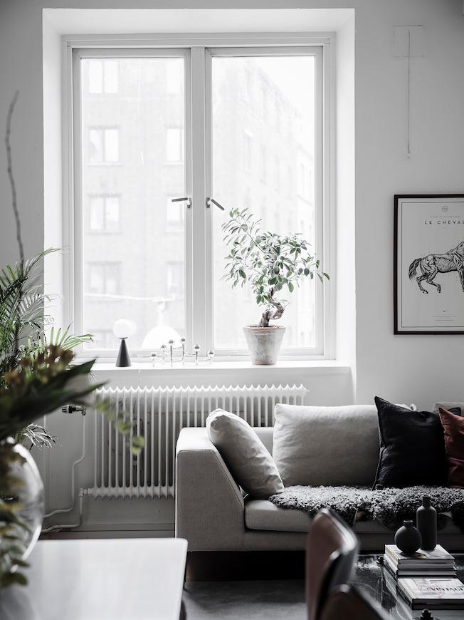 wohnen, Industriegebäude, Sofa, Fenster